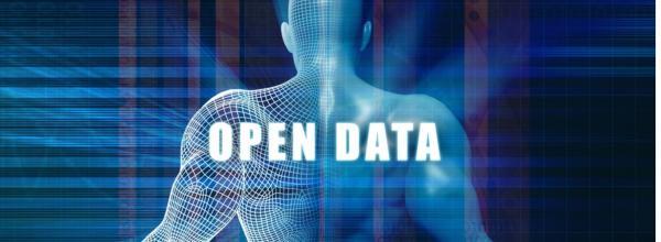 Open data pubblici, la strategia perché siano (davvero) utili all'Italia