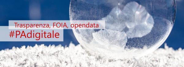 PADigitale: Trasparenza, FOIA e open data chiamate alla verifica degli obiettivi
